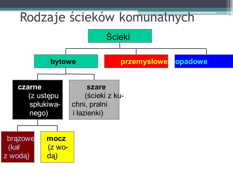 Rodzaje ścieków komunalnych brązowe (kał z wodą) mocz (z wo- dą) czarne (z ustępu spłukiwa- nego) szare (ścieki z ku- chni, pralni i łazienki) bytowep
