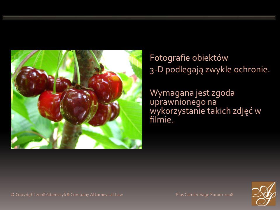 Fotografie obiektów 3-D podlegają zwykle ochronie. Wymagana jest zgoda uprawnionego na wykorzystanie takich zdjęć w filmie. © Copyright 2008 Adamczyk