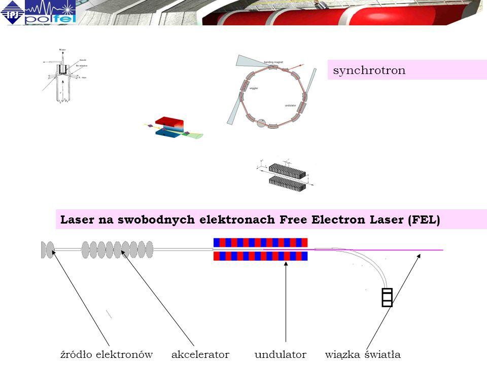 źródło elektronów akcelerator undulator wiązka światła Laser na swobodnych elektronach Free Electron Laser (FEL) synchrotron
