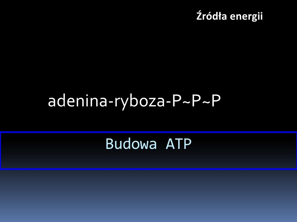 adenina-ryboza-P~P~P Budowa ATP Źródła energii