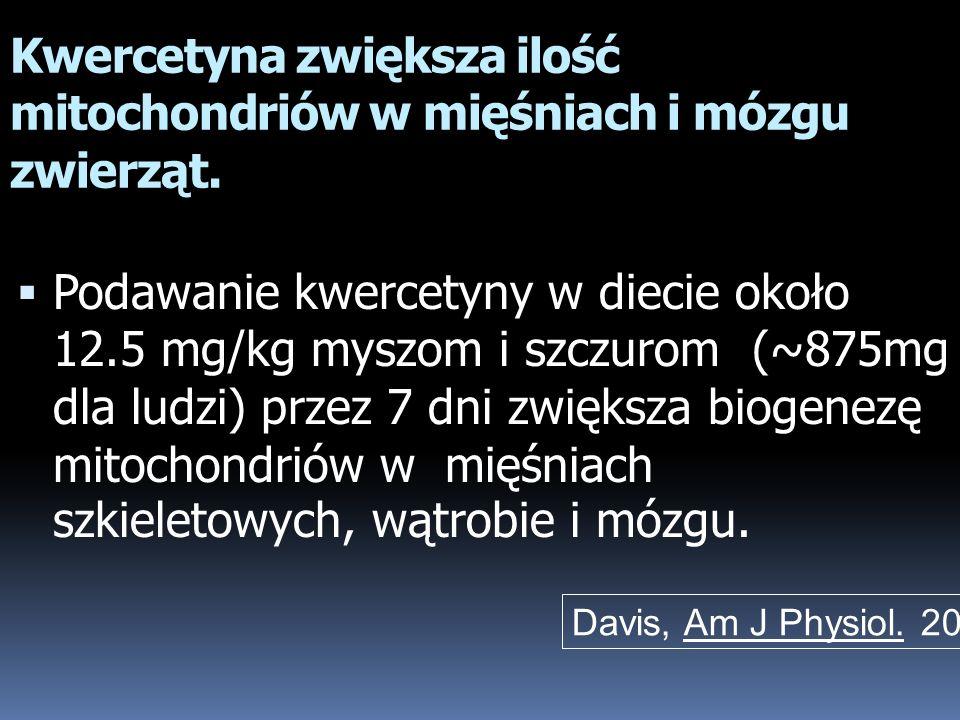 Kwercetyna zwiększa ilość mitochondriów w mięśniach i mózgu zwierząt. Podawanie kwercetyny w diecie około 12.5 mg/kg myszom i szczurom (~875mg dla lud