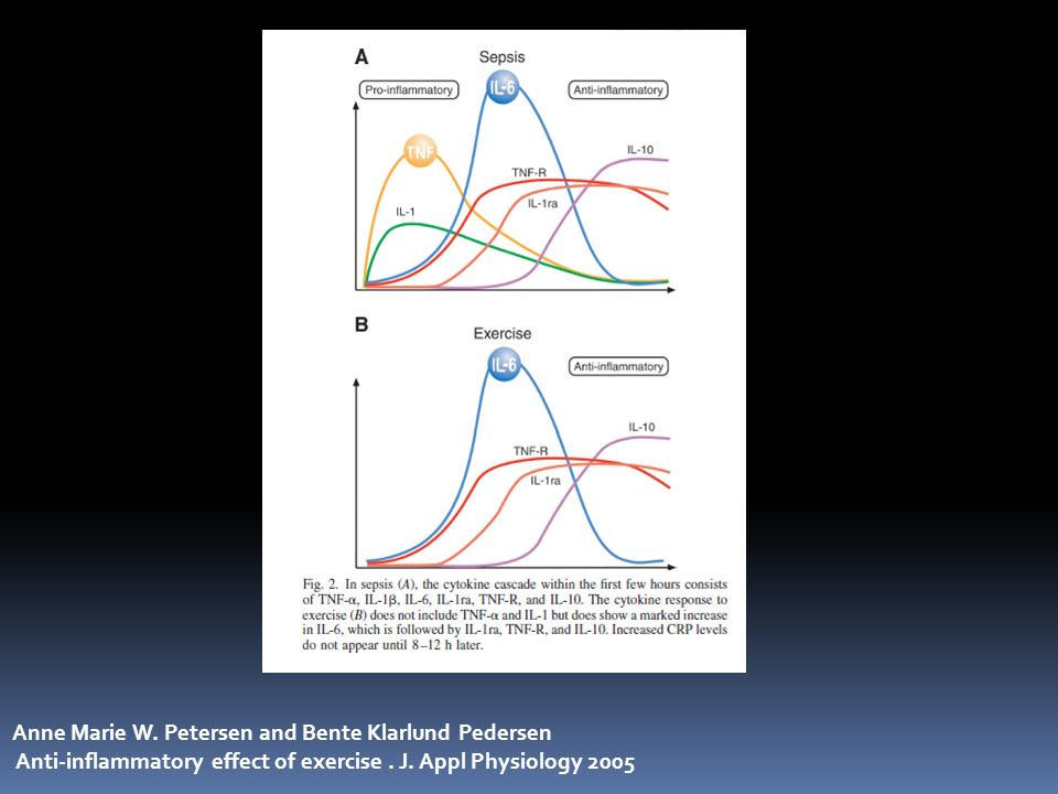 Anne Marie W. Petersen and Bente Klarlund Pedersen Anti-inflammatory effect of exercise. J. Appl Physiology 2005