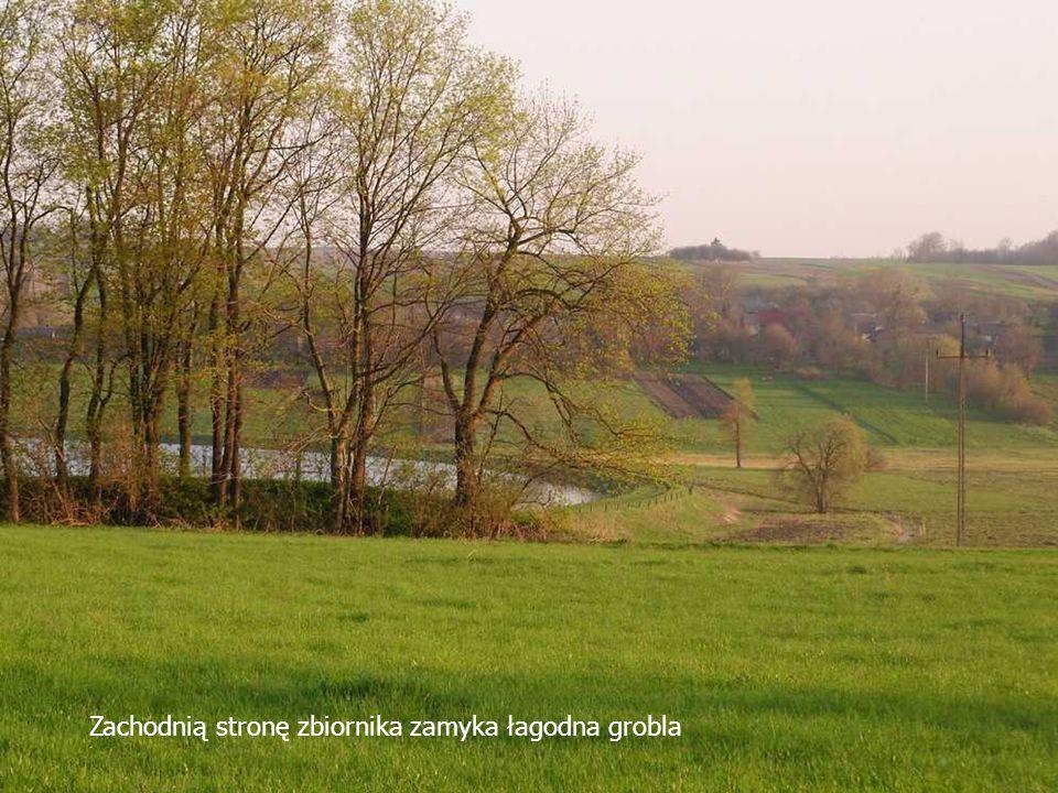 Zachodnią stronę zbiornika zamyka łagodna grobla