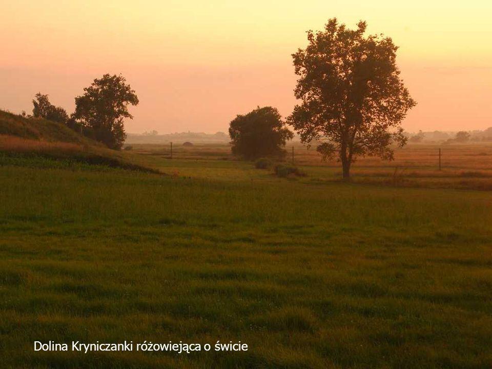 Dolina Kryniczanki różowiejąca o świcie