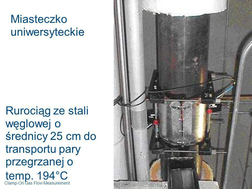 Miasteczko uniwersyteckie Rurociąg ze stali węglowej o średnicy 25 cm do transportu pary przegrzanej o temp. 194°C Clamp-On Gas Flow Measurement