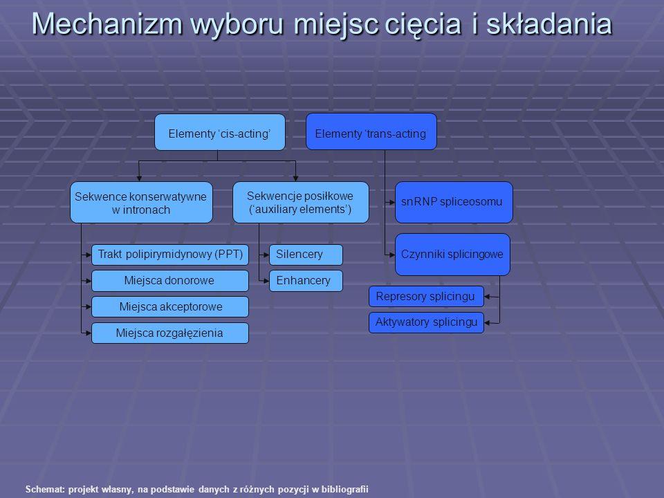 Mechanizm wyboru miejsc cięcia i składania Elementy cis-acting Elementy trans-acting Sekwencje posiłkowe (auxiliary elements) Sekwence konserwatywne w