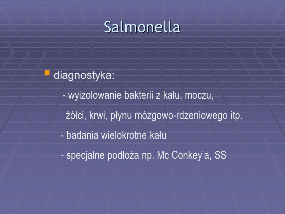 Salmonella diagnostyka: - wyizolowanie bakterii z kału, moczu, żółci, krwi, płynu mózgowo-rdzeniowego itp. - badania wielokrotne kału - specjalne podł