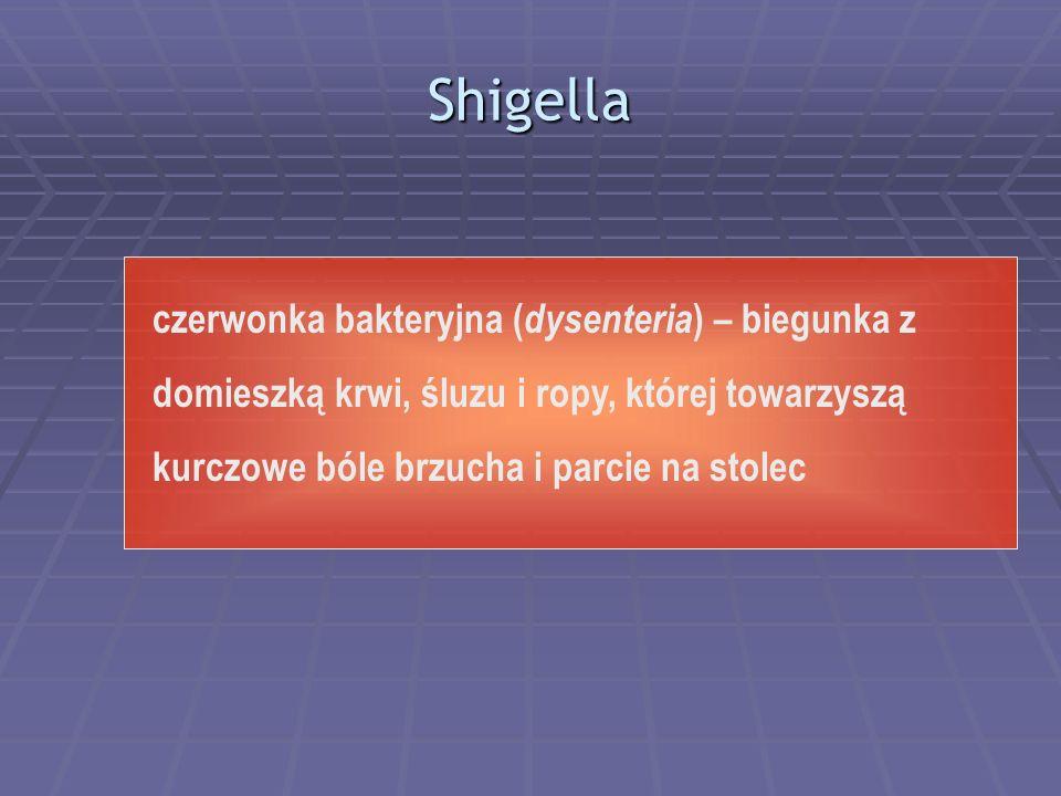 Shigella czerwonka bakteryjna ( dysenteria ) – biegunka z domieszką krwi, śluzu i ropy, której towarzyszą kurczowe bóle brzucha i parcie na stolec