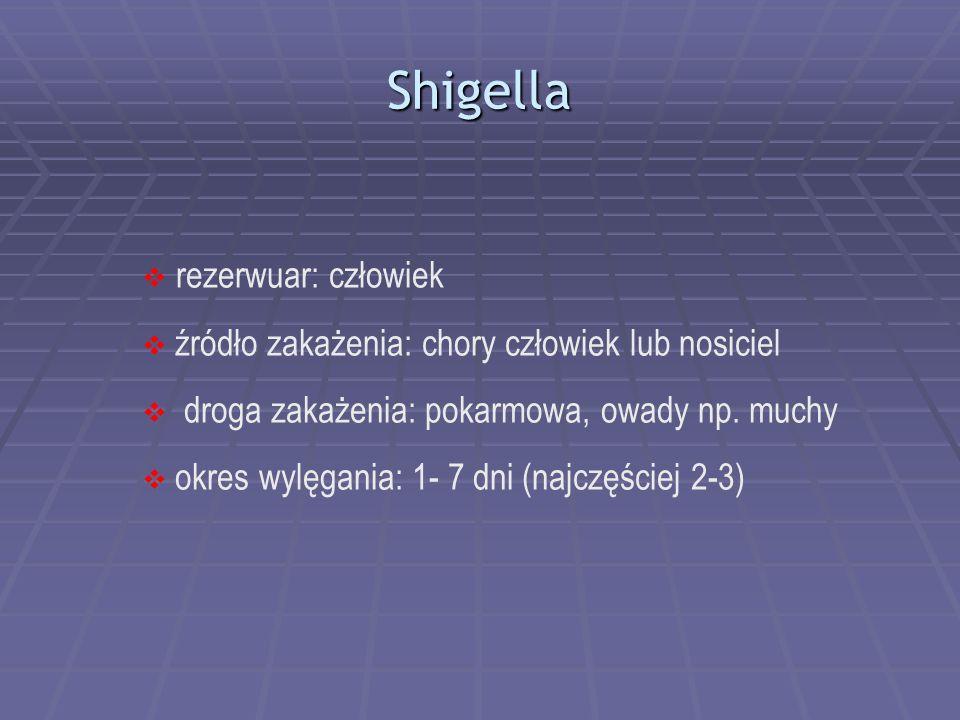 Shigella rezerwuar: człowiek źródło zakażenia: chory człowiek lub nosiciel droga zakażenia: pokarmowa, owady np. muchy okres wylęgania: 1- 7 dni (najc