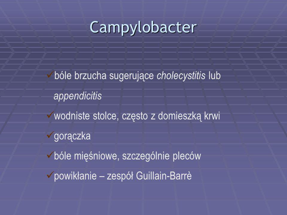 Campylobacter bóle brzucha sugerujące cholecystitis lub appendicitis wodniste stolce, często z domieszką krwi gorączka bóle mięśniowe, szczególnie ple