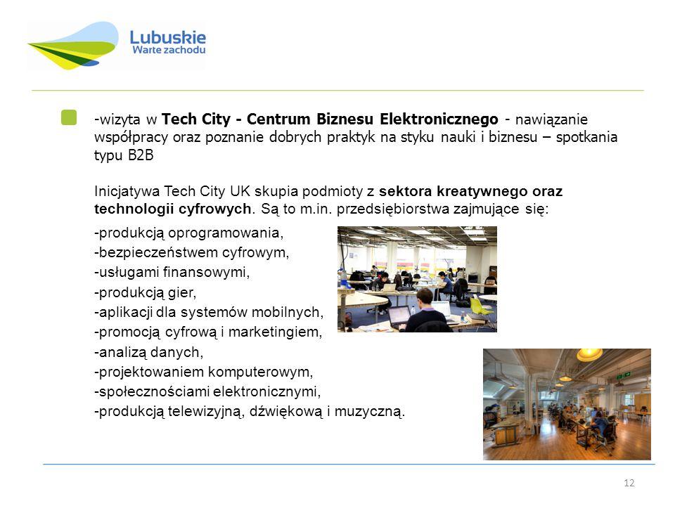 12 -wizyta w Tech City - Centrum Biznesu Elektronicznego - nawiązanie współpracy oraz poznanie dobrych praktyk na styku nauki i biznesu – spotkania ty