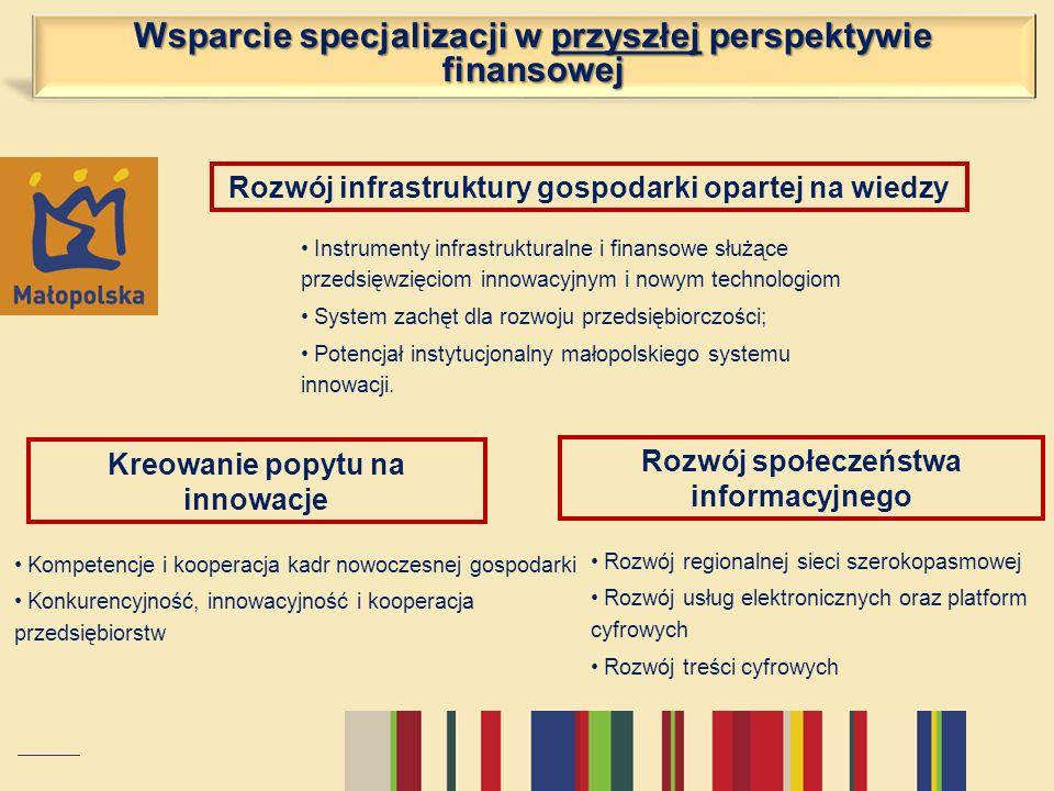 Wsparcie specjalizacji w przyszłej perspektywie finansowej Rozwój infrastruktury gospodarki opartej na wiedzy Instrumenty infrastrukturalne i finansow