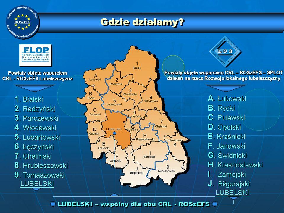 LUBELSKI – wspólny dla obu CRL - ROSzEFS Powiaty objęte wsparciem CRL - ROSzEFS Lubelszczyzna Powiaty objęte wsparciem CRL - ROSzEFS Lubelszczyzna Pow