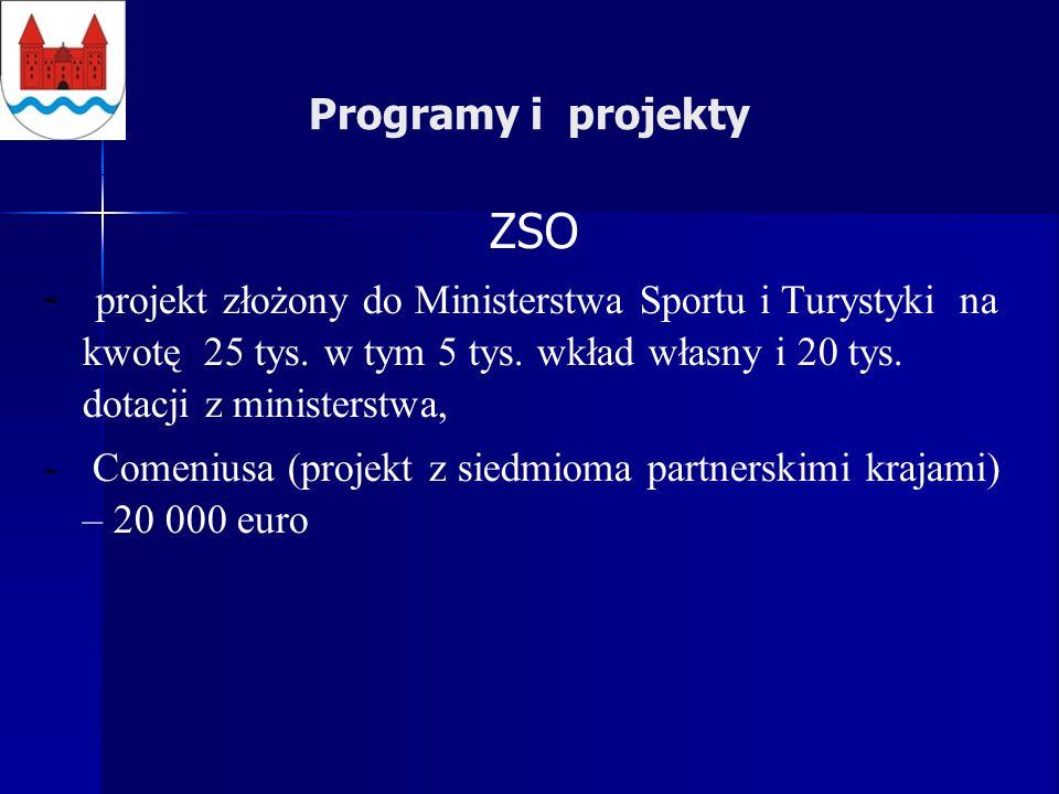 Programy i projekty ZSO - projekt złożony do Ministerstwa Sportu i Turystyki na kwotę 25 tys.