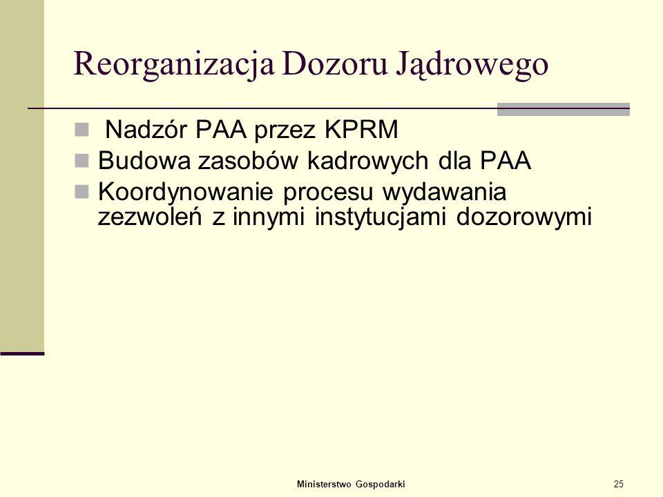 Ministerstwo Gospodarki24 System podejmowania decyzji dotyczących programu EJ Utworzenie NEPIO – instytucja wdrażająca i koordynująca program EJ PAA j