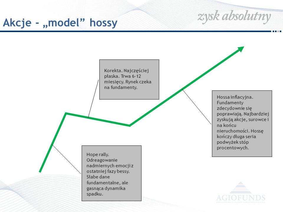 PLN – powrót do trendu wzrostowego W lutym 2009 PLN przetestował poziomy, które w poprzednich cyklach stanowiły wsparcie techniczne.