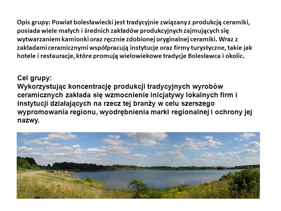 Opis grupy: Powiat bolesławiecki jest tradycyjnie związany z produkcją ceramiki, posiada wiele małych i średnich zakładów produkcyjnych zajmujących si
