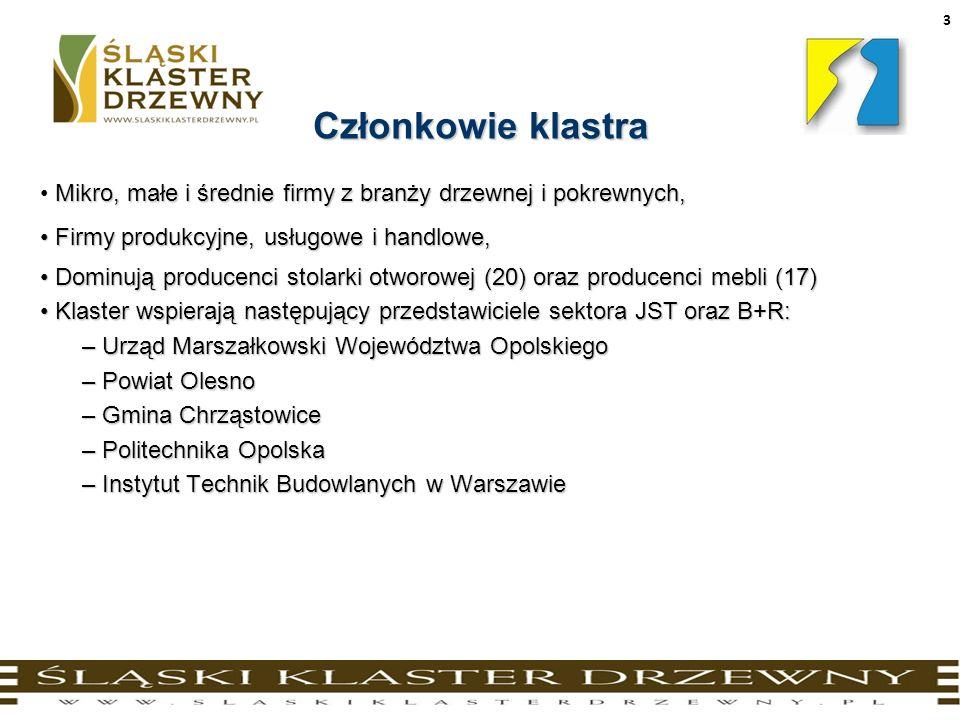 4 Przesłanki utworzenia klastra Zalążkiem Śląskiego Klastra Drzewnego był istniejący od początku lat dziewięćdziesiątych tzw.