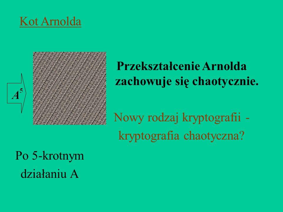 Po 5-krotnym działaniu A Przekształcenie Arnolda zachowuje się chaotycznie. Nowy rodzaj kryptografii - kryptografia chaotyczna? Kot Arnolda
