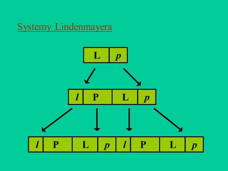 Systemy Lindenmayera L | p l | P