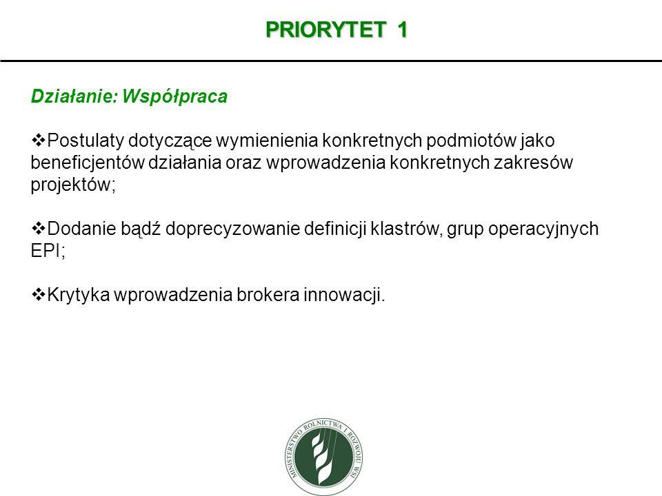 PRIORYTET 1 Działanie: Współpraca Postulaty dotyczące wymienienia konkretnych podmiotów jako beneficjentów działania oraz wprowadzenia konkretnych zak