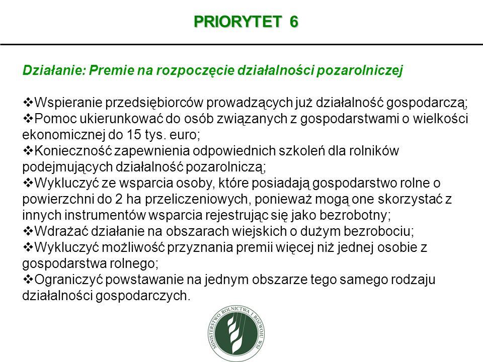 PRIORYTET 6 Działanie: Premie na rozpoczęcie działalności pozarolniczej Wspieranie przedsiębiorców prowadzących już działalność gospodarczą; Pomoc uki