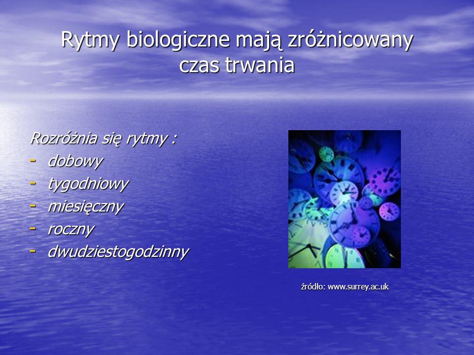 Rytmy biologiczne mają zróżnicowany czas trwania Rozróżnia się rytmy : - dobowy - tygodniowy - miesięczny - roczny - dwudziestogodzinny źródło: www.su
