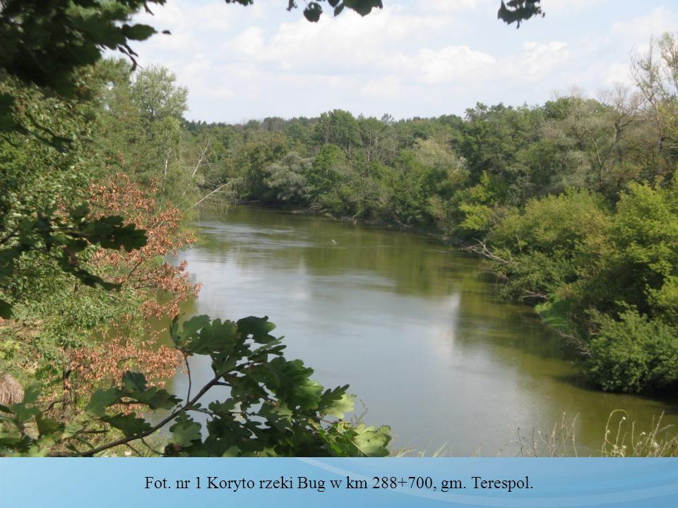 Fot. nr 16 Wał przeciwpowodziowy rzeki Bug Aleja Marzeń, gm. Terespol w km 283+300.