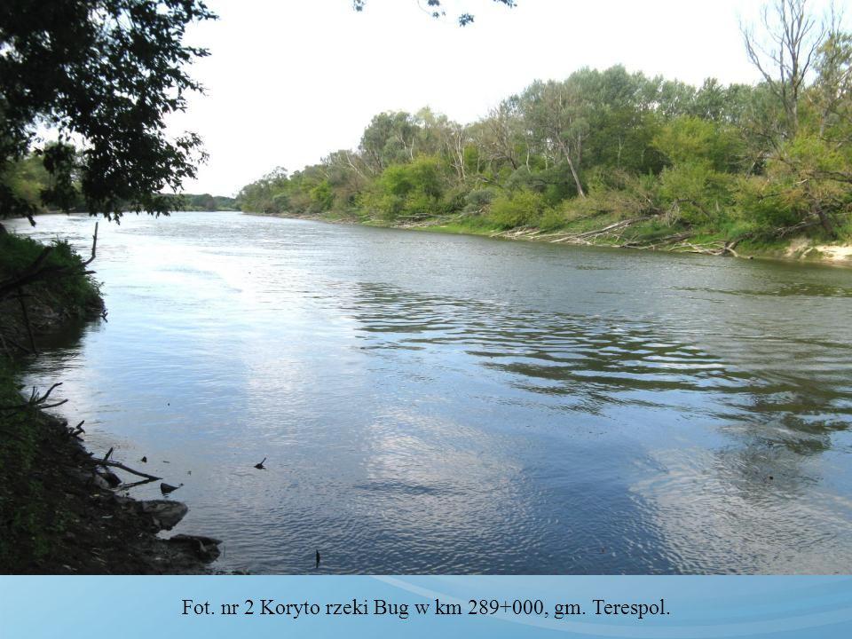 Projektowana infrastruktura przeciwpowodziowa dolin chronionych na odcinku granicznym rzeki Bug 25 17950 23 6350 48 24300 szt.