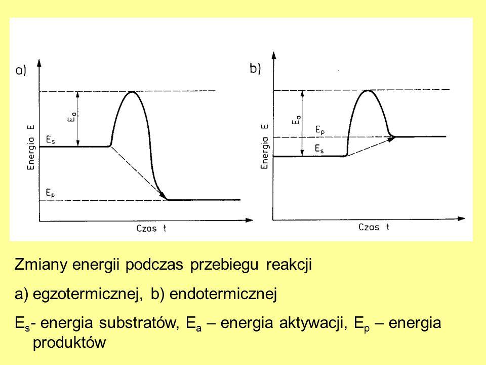 Zmiany energii podczas przebiegu reakcji a)egzotermicznej, b) endotermicznej E s - energia substratów, E a – energia aktywacji, E p – energia produktó