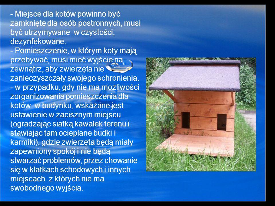 - Miejsce dla kotów powinno być zamknięte dla osób postronnych, musi być utrzymywane w czystości, dezynfekowane. - Pomieszczenie, w którym koty mają p