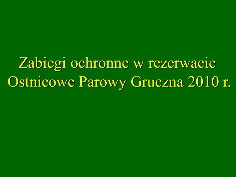 Zabiegi ochronne w rezerwacie Ostnicowe Parowy Gruczna 2010 r.