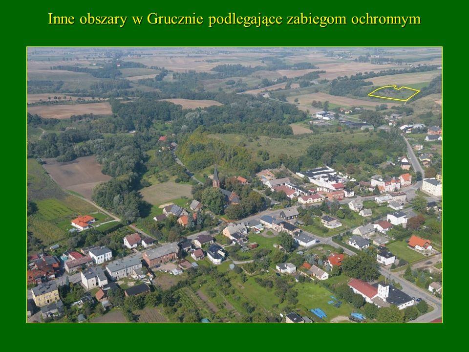 Inne obszary w Grucznie podlegające zabiegom ochronnym