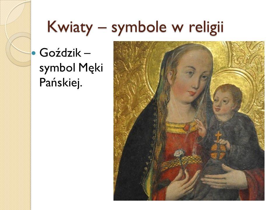 Kwiaty – symbole w religii Goździk – symbol Męki Pańskiej.