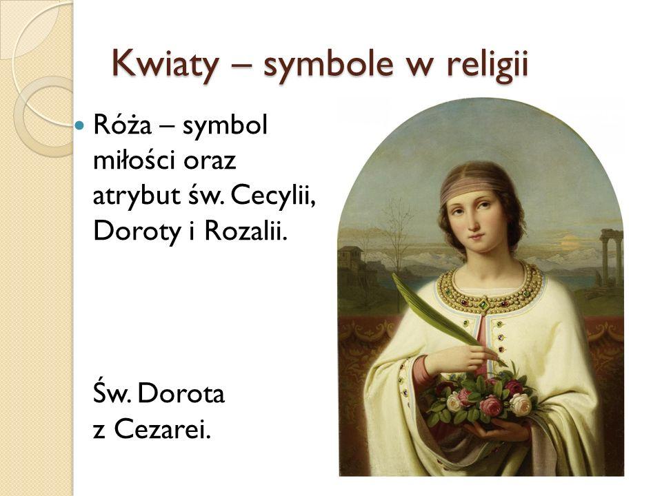 Kwiaty – symbole w religii Róża – symbol miłości oraz atrybut św. Cecylii, Doroty i Rozalii. Św. Dorota z Cezarei.