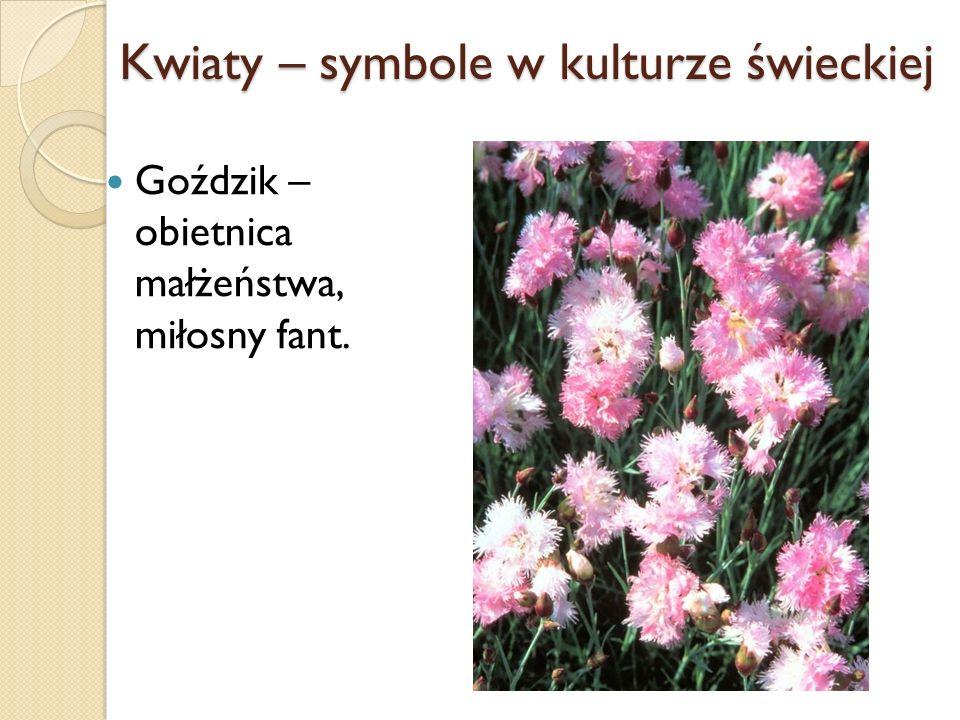 Kwiaty – symbole w kulturze świeckiej Goździk – obietnica małżeństwa, miłosny fant.