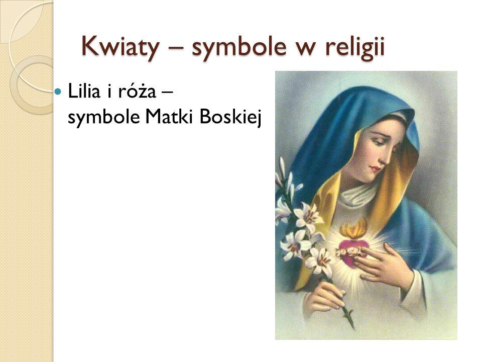 Kwiaty – symbole w religii Lilia i róża – symbole Matki Boskiej