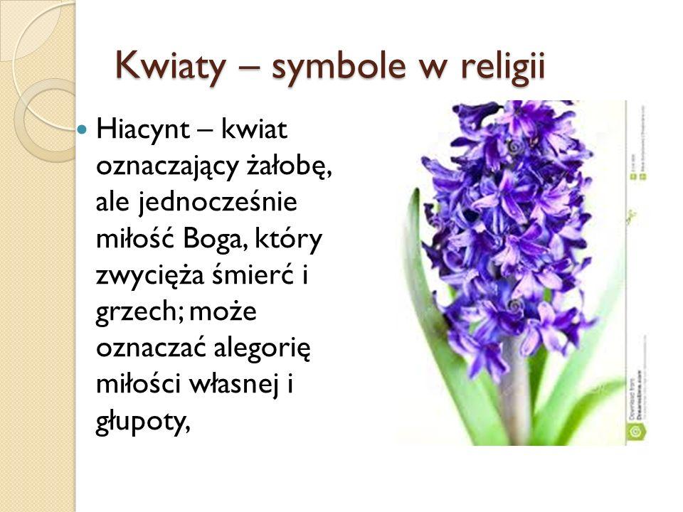 Kwiaty – symbole w religii Hiacynt – kwiat oznaczający żałobę, ale jednocześnie miłość Boga, który zwycięża śmierć i grzech; może oznaczać alegorię mi