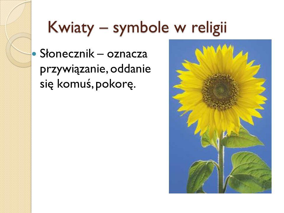 Kwiaty – symbole w religii Słonecznik – oznacza przywiązanie, oddanie się komuś, pokorę.