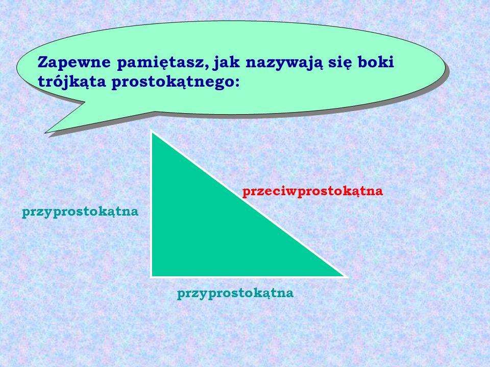Zapewne pamiętasz, jak nazywają się boki trójkąta prostokątnego: przyprostokątna przeciwprostokątna