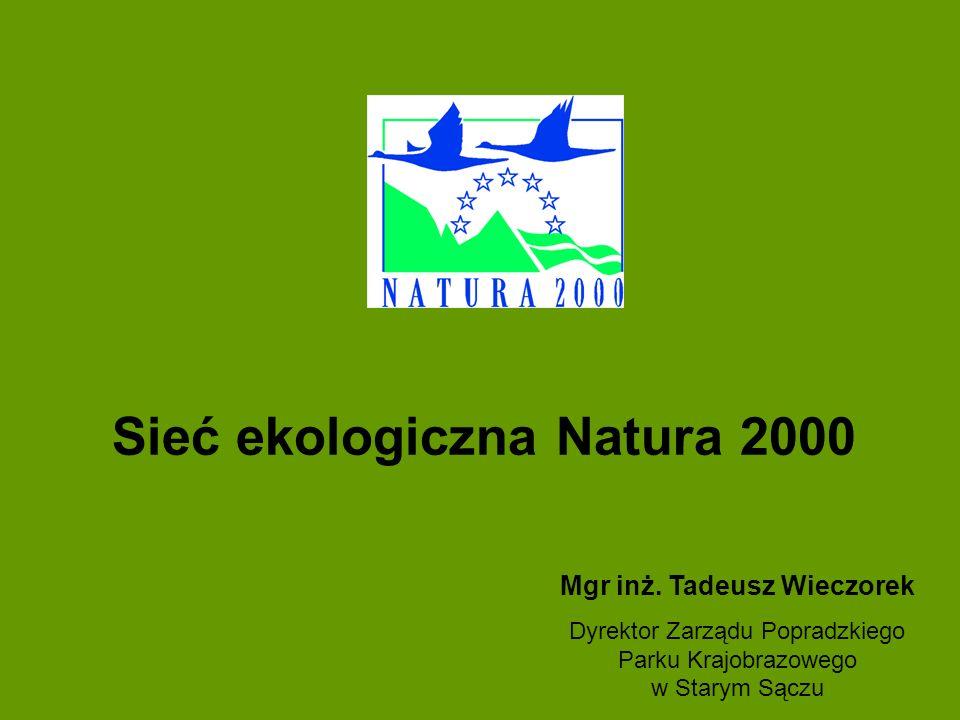 Sieć ekologiczna Natura 2000 Mgr inż. Tadeusz Wieczorek Dyrektor Zarządu Popradzkiego Parku Krajobrazowego w Starym Sączu