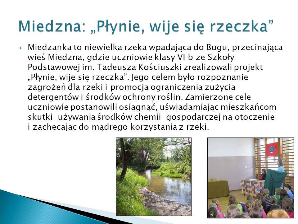 Miedzanka to niewielka rzeka wpadająca do Bugu, przecinająca wieś Miedzna, gdzie uczniowie klasy VI b ze Szkoły Podstawowej im. Tadeusza Kościuszki zr
