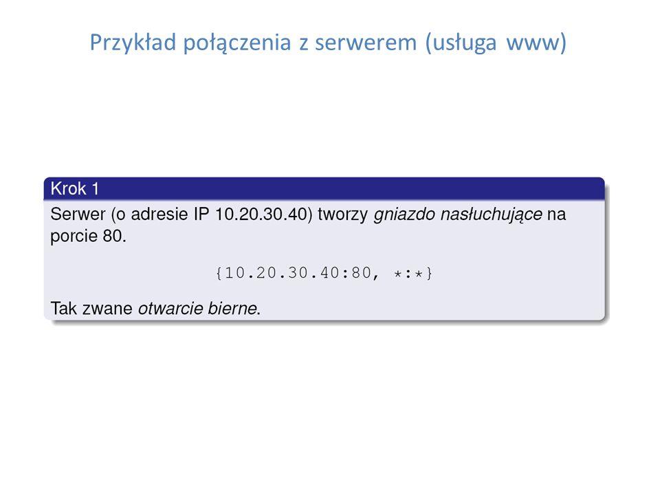Przykład połączenia z serwerem (usługa www)