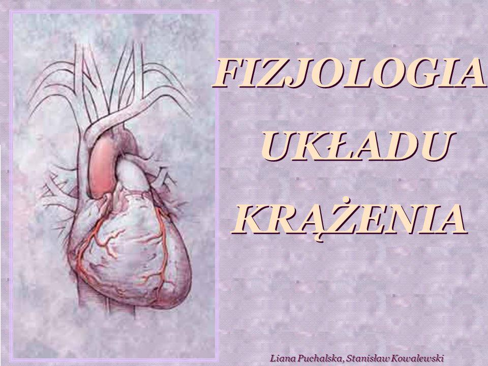Objętość całkowita krwi (Q) przepływającej przez układ krążenia w ciągu minuty jest równa pojemności minutowej serca (CO).
