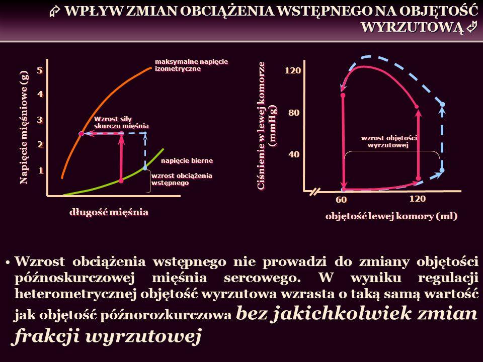 WPŁYW ZMIAN OBCIĄŻENIA WSTĘPNEGO NA OBJĘTOŚĆ WYRZUTOWĄ Wzrost obciążenia wstępnego nie prowadzi do zmiany objętości późnoskurczowej mięśnia sercowego.
