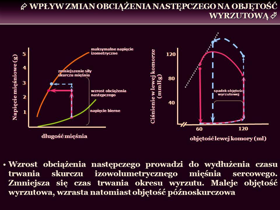 WPŁYW ZMIAN OBCIĄŻENIA NASTĘPCZEGO NA OBJĘTOŚĆ WYRZUTOWĄ Wzrost obciążenia następczego prowadzi do wydłużenia czasu trwania skurczu izowolumetrycznego