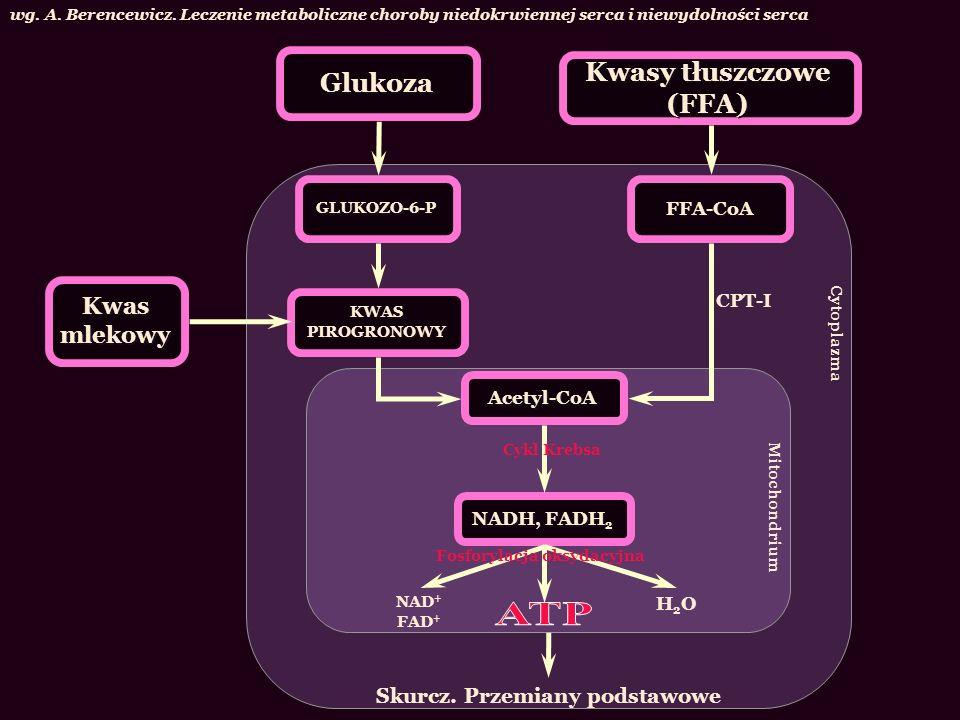 Glukoza Kwasy tłuszczowe (FFA) wg. A. Berencewicz. Leczenie metaboliczne choroby niedokrwiennej serca i niewydolności serca Kwas mlekowy KWAS PIROGRON