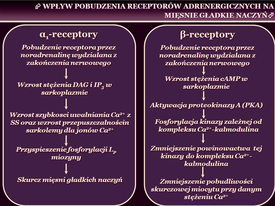 β-receptory Pobudzenie receptora przez noradrenalinę wydzialana z zakończenia nerwowego β-receptory Pobudzenie receptora przez noradrenalinę wydzialan
