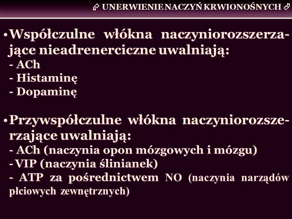UNERWIENIE NACZYŃ KRWIONOŚNYCH Współczulne włókna naczyniorozszerza- jące nieadrenerciczne uwalniają: - ACh - Histaminę - Dopaminę Przywspółczulne włó