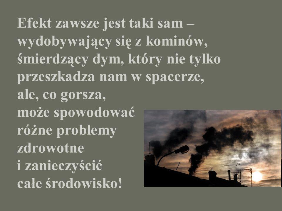 Efekt zawsze jest taki sam – wydobywający się z kominów, śmierdzący dym, który nie tylko przeszkadza nam w spacerze, ale, co gorsza, może spowodować r